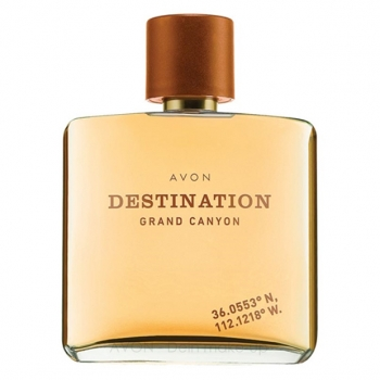 AVON DESTINATION GRAND CANYON Eau de Toilette Spray